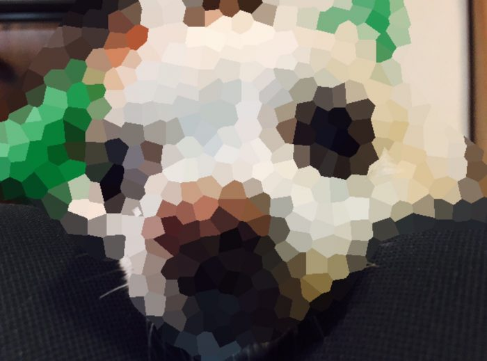ブログやサイト運営で使えるオススメの画像加工アプリ3つ「Snapseed」「Skitch」「モザイク」