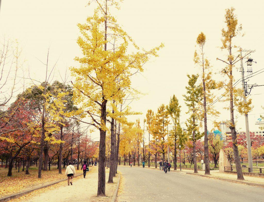日本国内でわずか数名の希少難病「肢端紅痛症(したんこうつうしょう)」の当事者の話が恐ろしすぎてゾッとした話