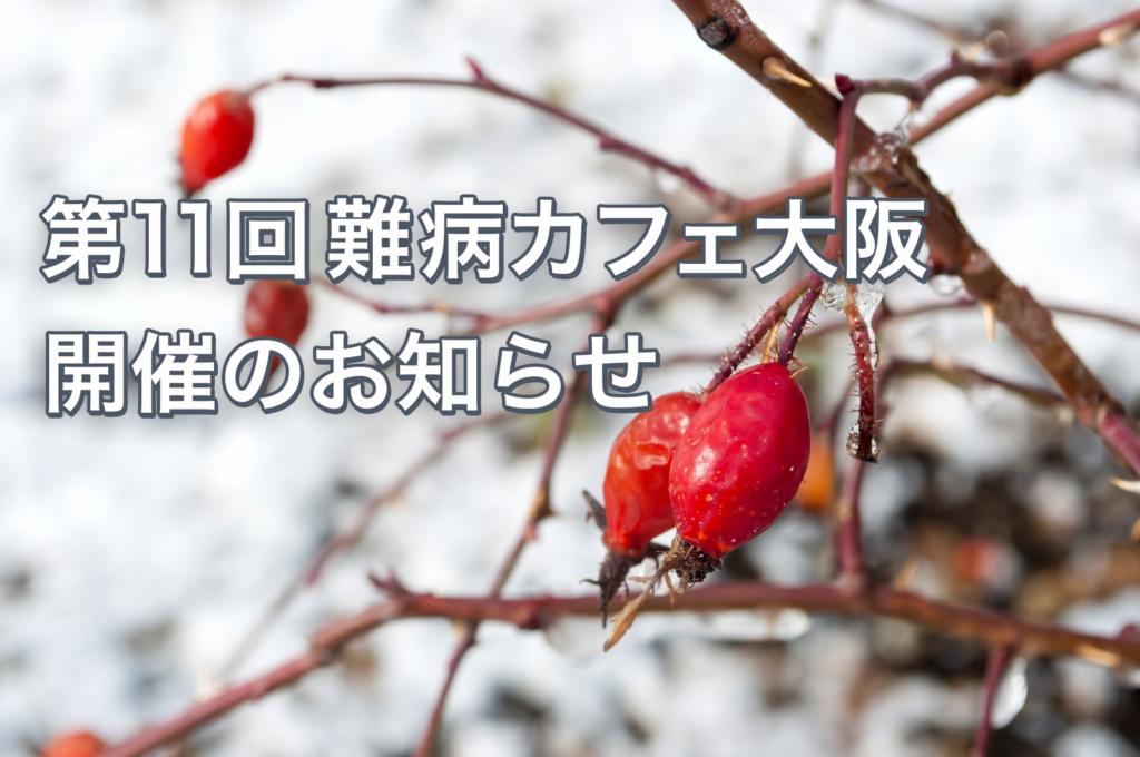 第11回難病カフェ大阪を1月12日(日)14時に開催します